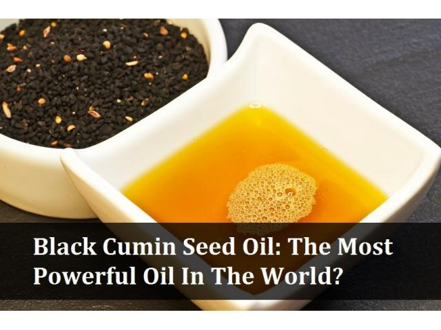http://supplementdigestdog.com/black-cumin-oil/